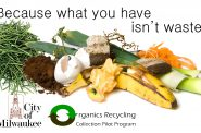 Organics Recycling Collection Pilot Program