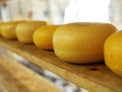 State's Cheesemakers Against the World