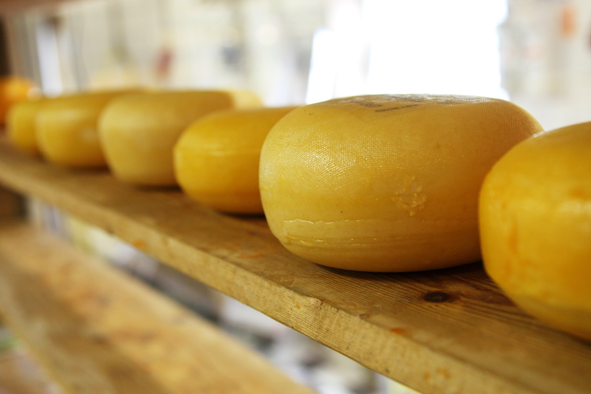 Cheese. Pixabay License. Free for commercial use. No attribution required.