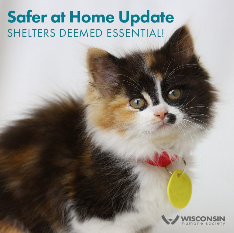 Safer at Home Update