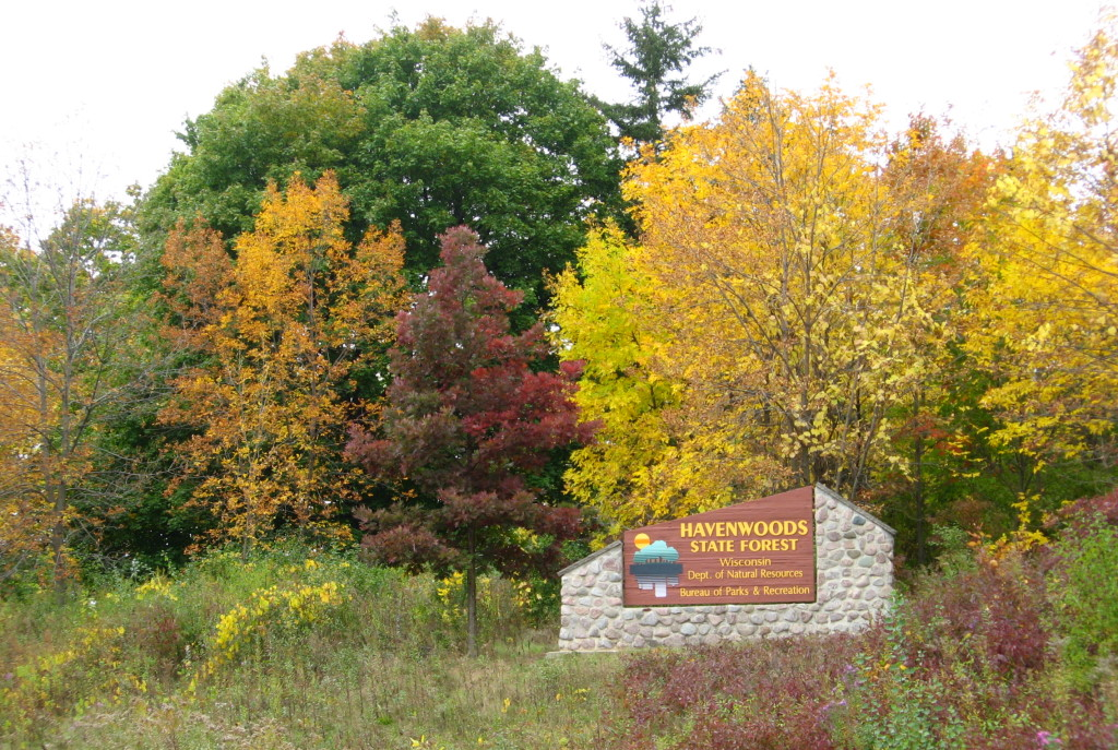 Forest Regeneration Project Scheduled For Havenwoods State Forest