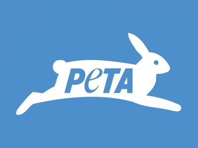 COVID-19 Prompts PETA Call for Marquette University to Shut Down Animal Labs