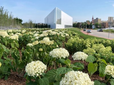 Museum of Wisconsin Art Receives NEA Cares Act Grant