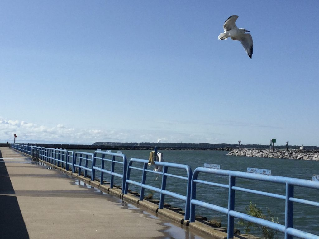 View from Government Pier. Photo by Cari Taylor-Carlson.