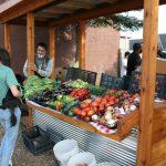 Eyes on Milwaukee: Vliet Street Oasis Opens on Near West Side