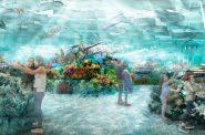 Milwaukee Public Museum Reef Rendering. Rendering Luci Creative
