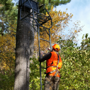 Hunter wearing a full-body harness climbs a treestand. / Photo Credit: Wisconsin DNR