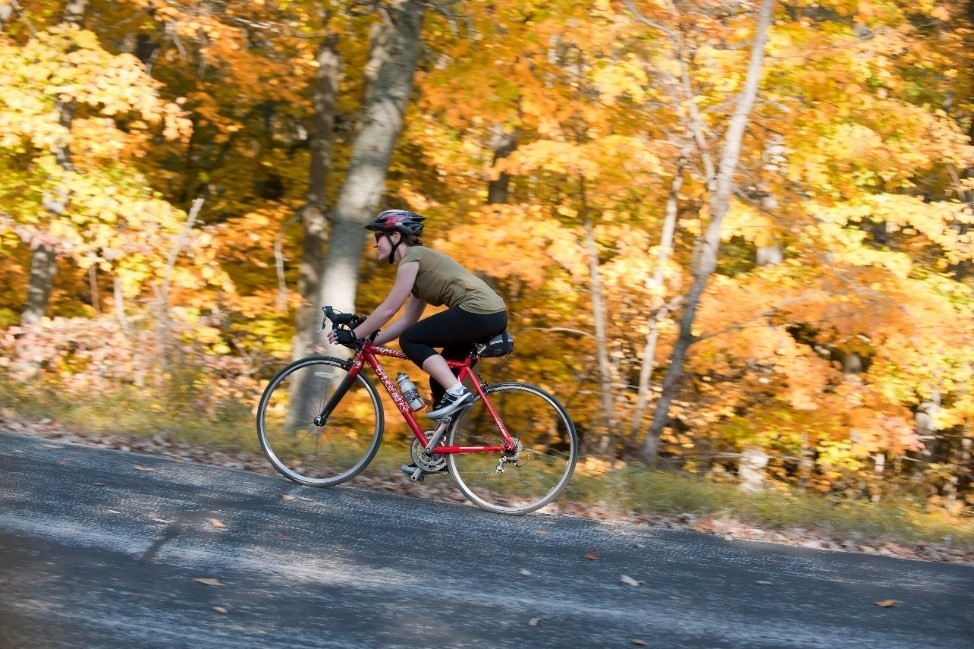 View Fall Foliage Via Wisconsin's Trails