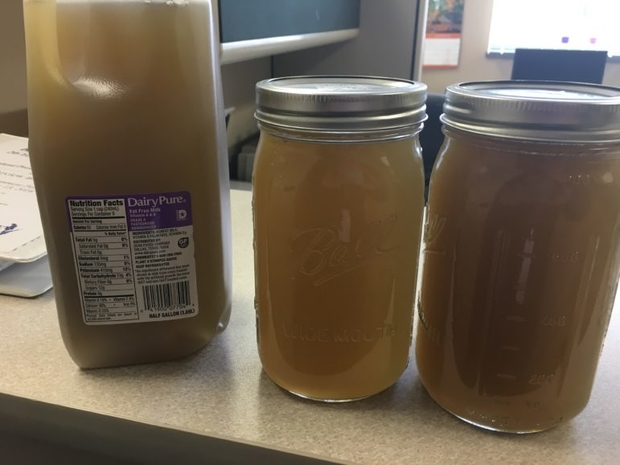 These jars contain brown water taken from a tap in Kewaunee County that researchers tied to the spreading of manure on a nearby field. The soil from the field and water from the home shared the same signatures for fecal contaminants. Photo courtesy of Kewaunee County Land & Water Conservation Department