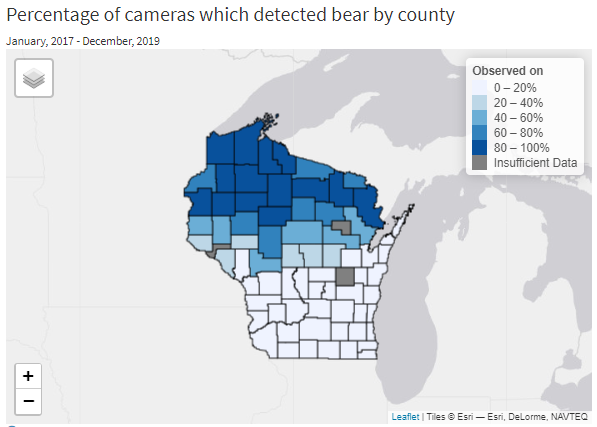 Bear sightings by county, as seen on the Snapshot Wisconsin data dashboard. / Photo Credit: Wisconsin DNR