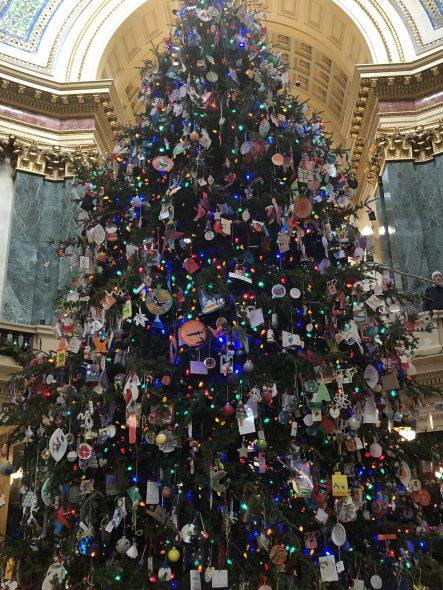 Wisconsin Capitol holiday Christmas tree 2019. Photo by Melanie Conklin/Wisconsin Examiner.