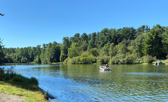 Share your thoughts at the upcoming public meeting on Dec. 8 regarding the proposed walleye regulation changes for Lake Menomin. / Photo Credit: Wisconsin DNR
