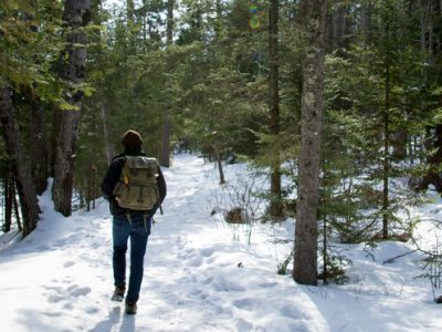 Latest <em>Wisconsin Natural Resources</em> Magazine Spotlights Seasonal State Park Walks And Outdoors For Everyone