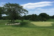 Greenfield Park Golf Course. File photo by Dave Reid.