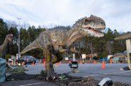 Dino Safari 2021. Photo by Imagine Exhibitions.
