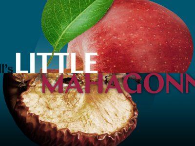 The Florentine Opera Presents Weill's Little Mahagonny