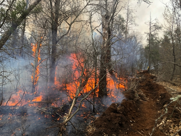 A fire in Burnett County that burned about 4 acres Saturday, May 9, 2020, was caused by someone throwing hot ashes from a wood stove or fireplace into the woods. Photo courtesy of the Wisconsin DNR