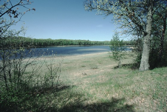 An archival image of the Plainfield Tunnel Channel Lakes in Waushara County, which have experienced a reduction in water levels due to groundwater withdrawals for irrigated agriculture. / Photo Credit: Wisconsin DNR