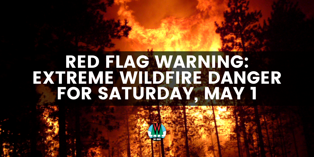 Image from the DNR.