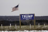 A Trump sign and torn US flag flying after the election near St Croix Falls, Wisconsin. Photo by Lorie Shaull from St Paul, United States, CC BY-SA 2.0 , via Wikimedia Commons