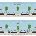 Transportation: Trees, Transit Thwart Riverwest Bike Lanes Plan