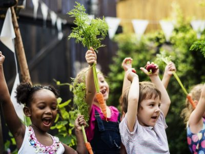 MPS Receives Urban Agriculture Grant