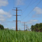 Secret Messages Cast Doubt on Approval of Controversial Transmission Line