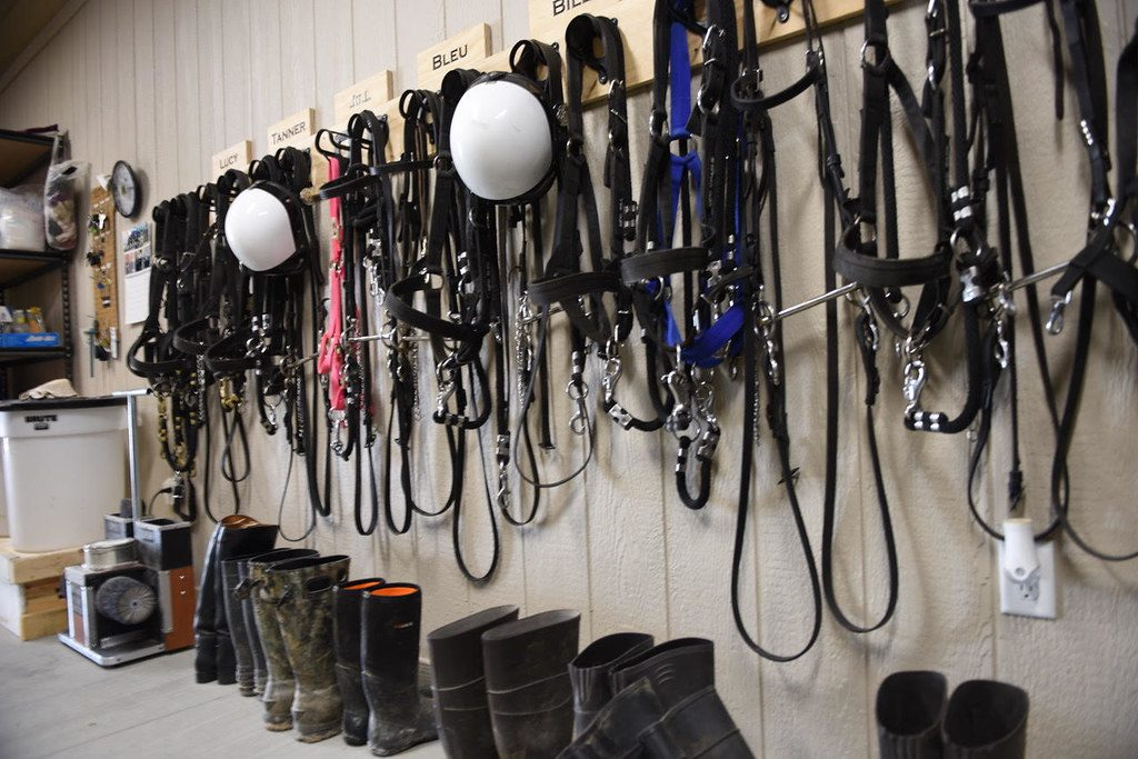 Equipment for the Milwaukee Police Department's Mounted Patrol. Photo by Sue Vliet/NNS.