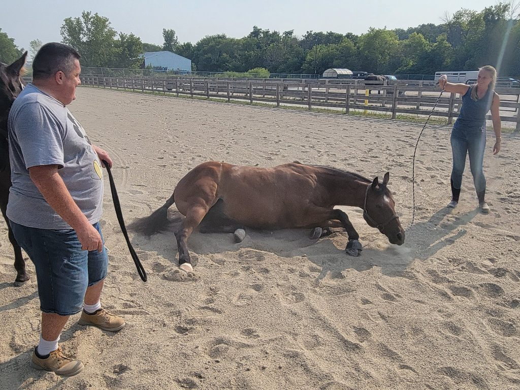 Coco, an equine-therapy horse, lays on the ground while Army veteran Glenn Scheuermam and Felicia Sackett, farm manager and equine specialist at MKE Urban Stables, stand watch. Photo by Edgar Mendez/NNS.