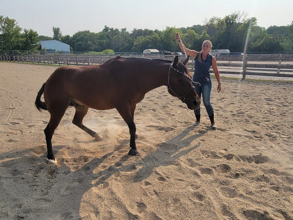 Felicia Sackett, farm manager and equine specialist at MKE Urban Stables, plays with Coco. Photo by Edgar Mendez/NNS.