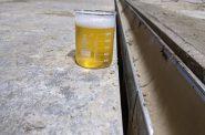 Photo courtesy of Amorphic Beer.