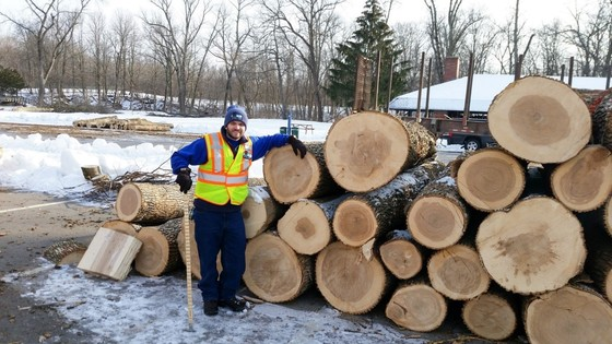 Celebrate Wisconsin's Working Forests During Forest Products Week Oct. 17 – 23